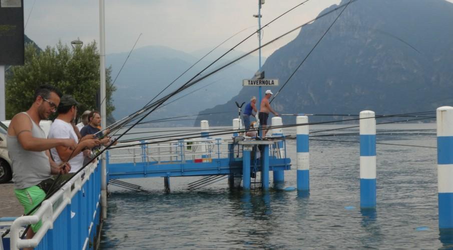 Le nuove regole della pesca in Regione Lombardia: nascono i bacini, ognuno con un suo regolamento. Sei quelli che atraversano le acque bergamasche
